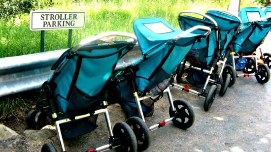 Renting a stroller is a known Disneyland Tip.