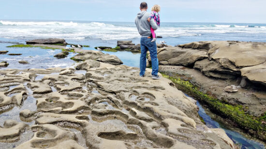 Looking for free San Diego family activities? These are the top 50 free summer things to do in San Diego with ideas for all families. #TMOM #SanDiego #California #Beach #Freein50States #FreeinSanDiego
