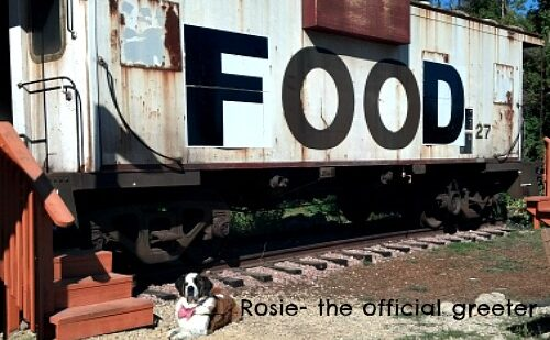 rosie the dog at flat pennies in Wisconsin