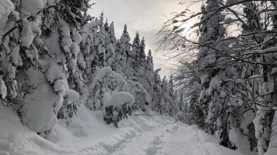 Visit the Saguenay Lac Saint Jean region of Quebec in the winter!