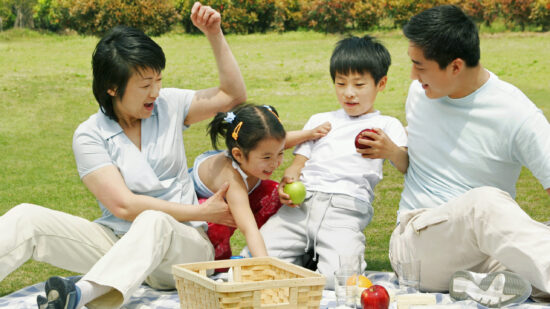 A picnic on a stepfamily vacation.