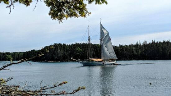 The Schooner Mary Day on a Maine Windjammer cruise.
