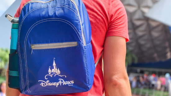 man carrying a backpack at disney world