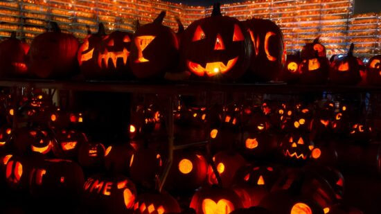 More than 30,000 carved pumpkins will be lit at this year's The Great Highwood Pumpkin Fest, in suburban Chicago. They're attempting to set a Guiness World Record. Photo courtesy of Chris Cizek