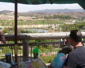 View at San Diego Zoo Safari Park with my special needs kid