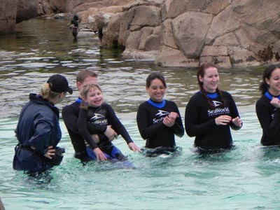 SeaWorld San Diego dolphin interaction program